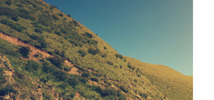 鸭洲地质景点