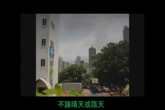 信义-我们的绿色校园