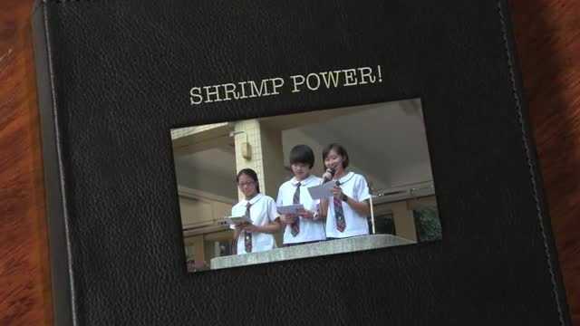 《SHRIMP POWER!》