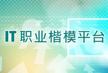 IT职业楷模平台