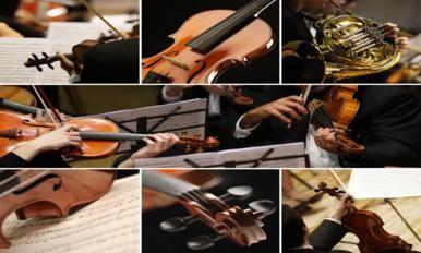 友谊音乐协会主办 - 小提琴班